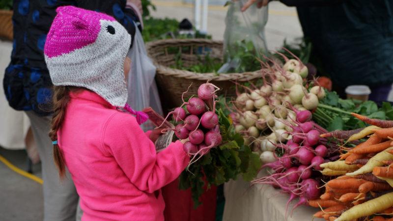 PoP girl radishes