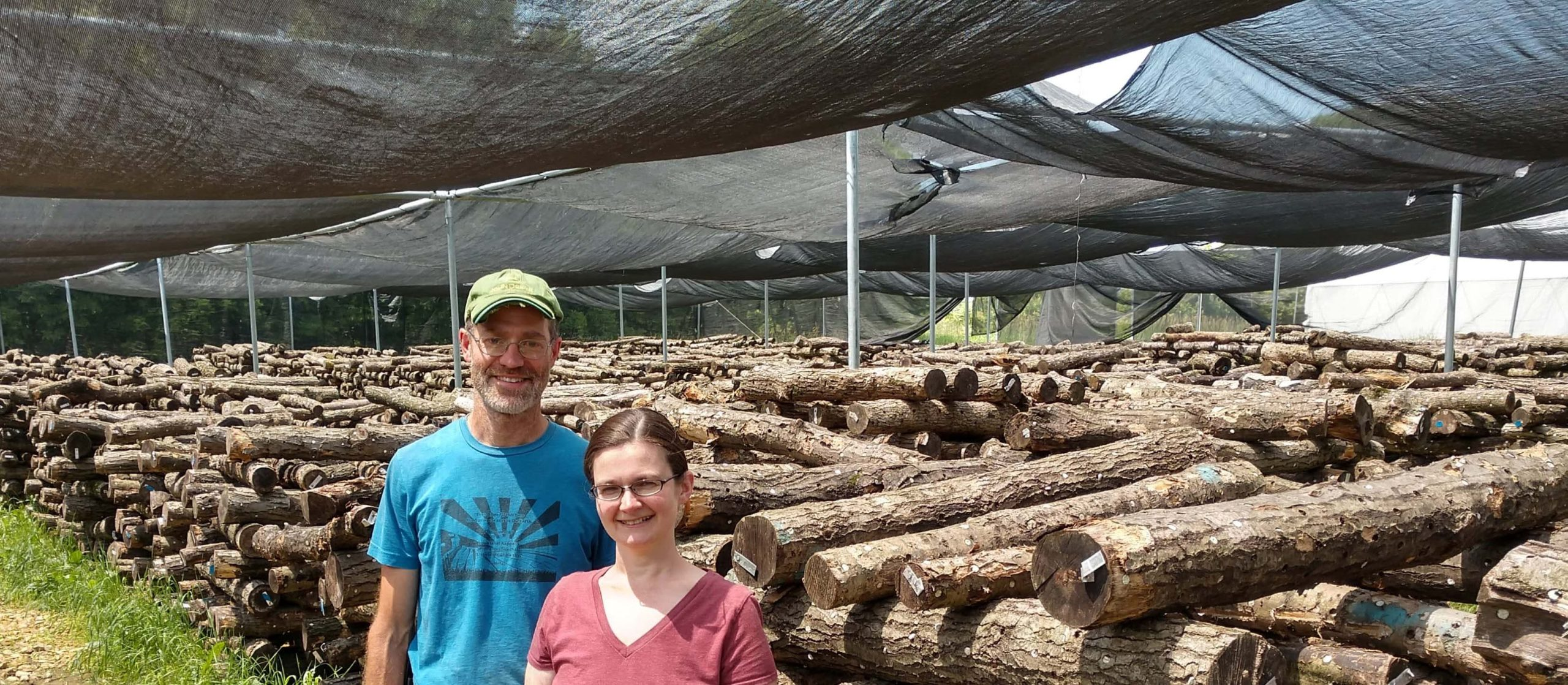 Aimee and Jeremy Northwood Mushrooms in shade structure