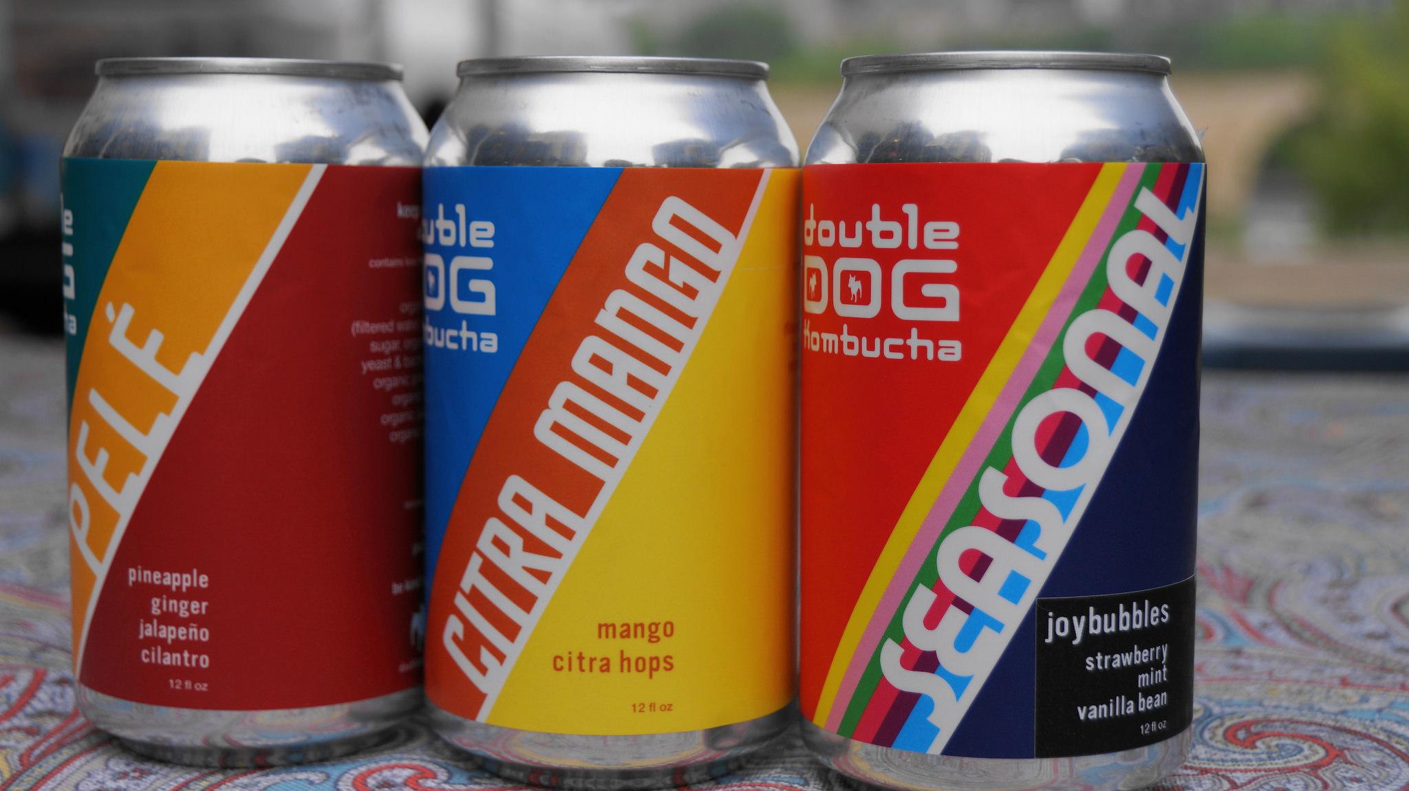 Double Dog Kombucha 3 cans