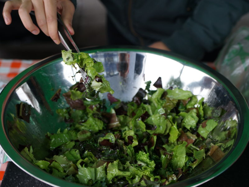 Mixed Green Salad with Ginger Dressing