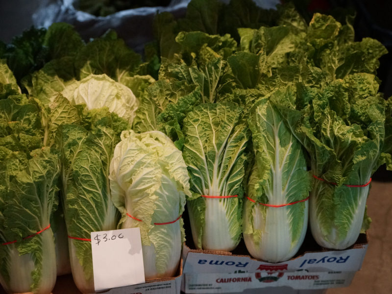 Napa Cabbage Farm visit bean market
