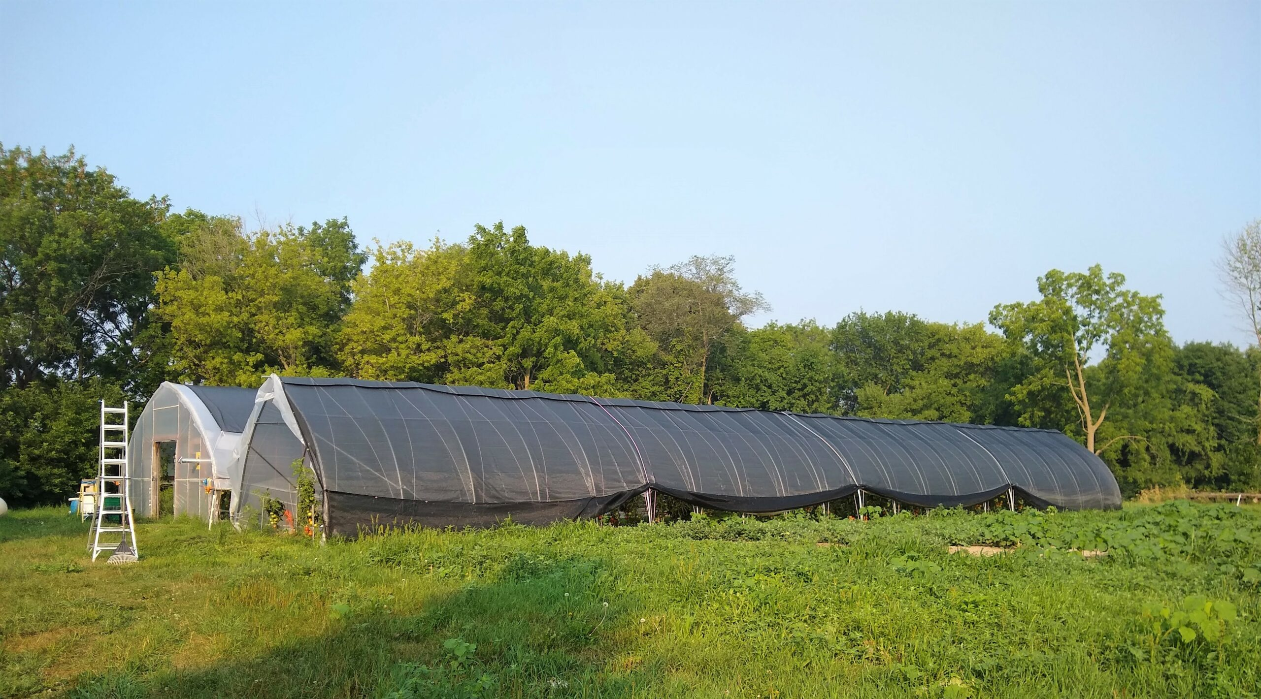 Nistler Farms Greenhouses