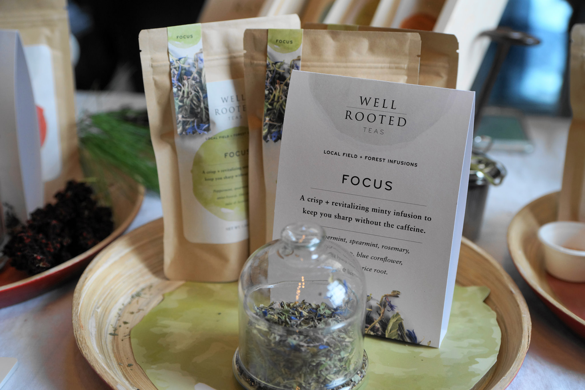 Well Rooted Gift Guide