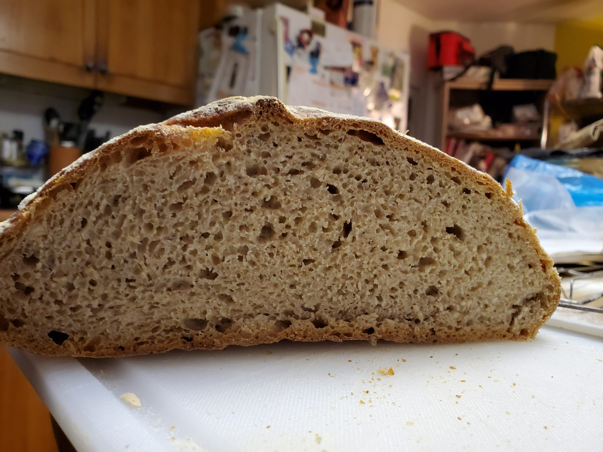 Yooper Whole Wheat slice