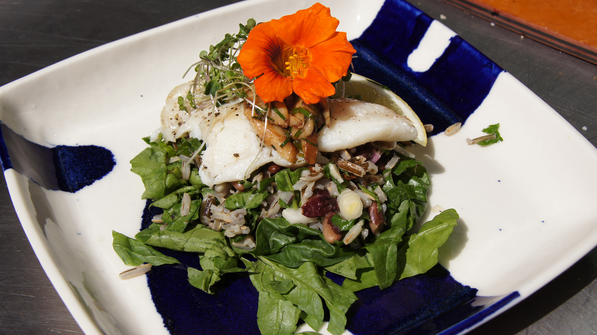 Cod with Heirloom bean and wild rice salad