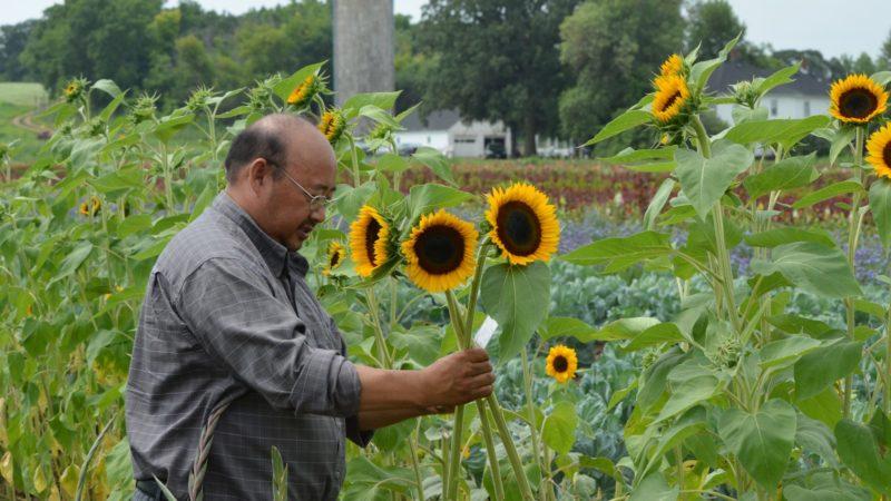 Der's Flower Farm