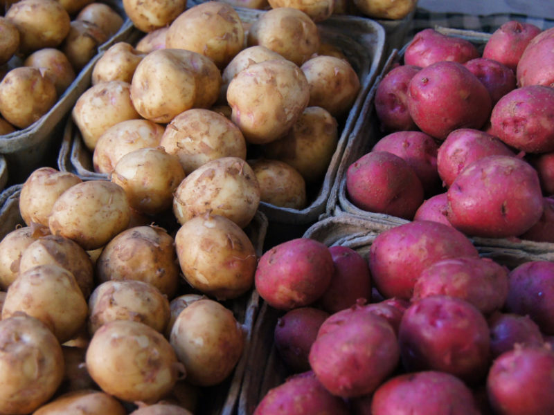 Salt Boiled Potatoes