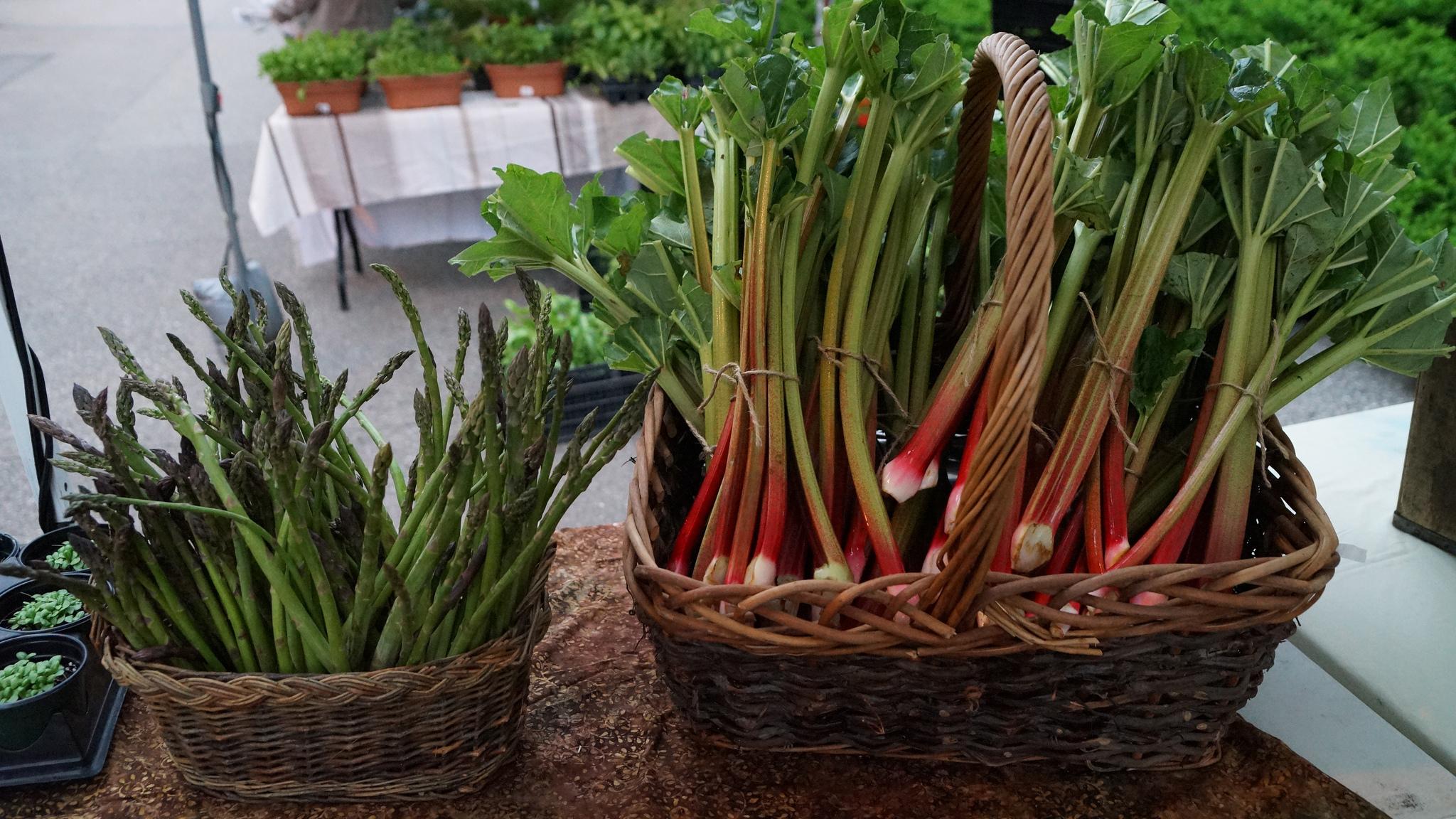 rhubarb and asparagus