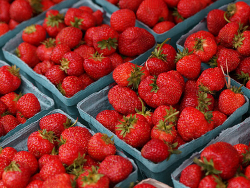 strawberries Twin Cities Berry Company