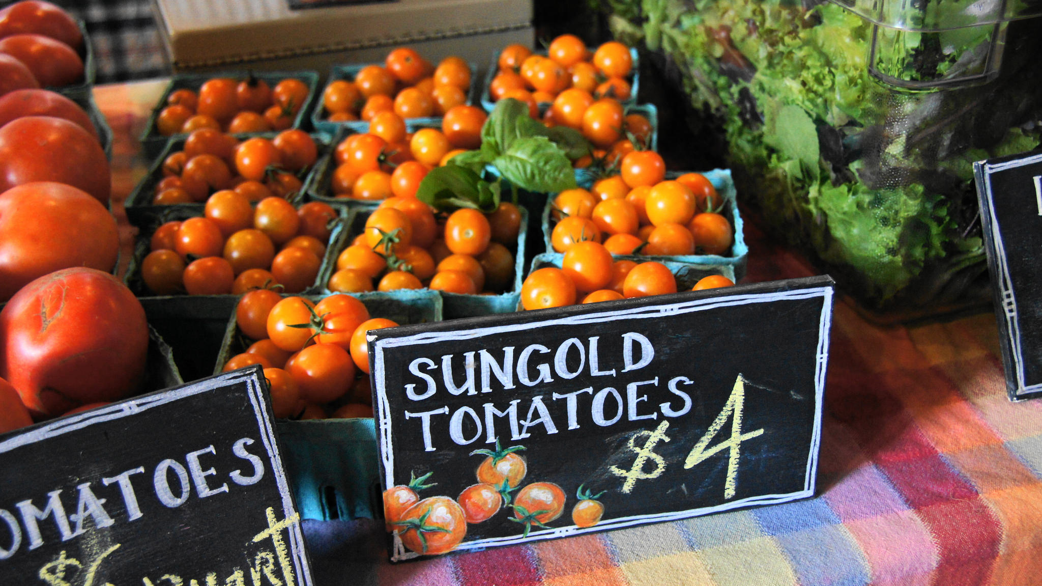Burning River Farm Sungold tomatoes